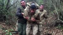 Şile'de Ormanlık Alanda Kaybolan Yaşlı Adam, Jandarmanın Israrlı Takibi Sonucu Bulundu