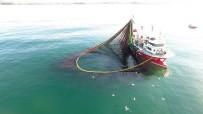 Balıkçılar Sinek Avlıyor