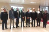 TÜRKIYE OTELCILER FEDERASYONU - Türkiye'nin İlk Helal Turizm Çalıştayı
