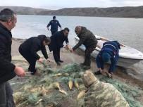 Çoğalması İçin Gölete Bırakılan Balıkları Avladılar
