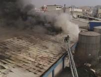 ALKOLLÜ İÇECEK - Alkollü içecek fabrikasında yangın