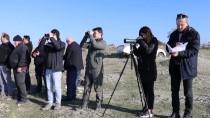 GÖLLER - Göller Yöresi'nde Su Kuşu Popülasyonu Arttı