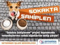 BAYRAMPAŞA BELEDİYESİ - Bayrampaşa'da Sokak Köpekleri Sahipsiz Değil