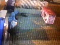 FIRINCILAR - Ekmek Hırsızı Mahalle Esnafını Bıktırdı