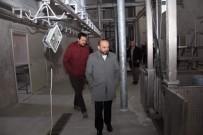 HAYVAN PAZARI - Tirebolu'ya Modern Mezbahane Ve Hayvan Pazarı