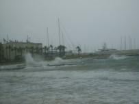 LODOS - Didim'de Lodos Balıkçıları Etkiledi