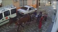 At Arabalı Çocuk Hırsızlar Güvenlik Kamerasına Böyle Yakalandı