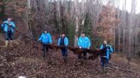 Su Borusundan 8 Metrelik Ağaç Kökü Çıktı