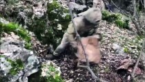 Terör Örgütü PKK'ya Ait 8 Sığınak İmha Edildi