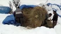 Besicilerin Kara Kışla Mücadelesi