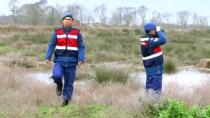 Kuş Cennetinde 'Ördek Katliamı' Yapan Avcılar Aranıyor