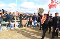 Başkan Çerçioğlu, İncirliova Deve Güreşlerini İzledi