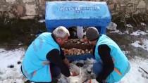 KORUMA MÜDÜRÜ - Sokak Hayvanlarını Sahiplenenlere Belediyeden Kulübe Hediyesi
