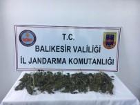 Ayvalık'ta Jandarma İlçeye Uyuşturucu Getiren 1 Kişiyi Yakaladı