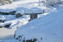Japon Bahçesi Kış Manzarası İle Büyülüyor