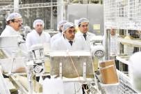 HALK EKMEK - Tuzcuoğlu, Halk Ekmek Fabrikası'nda İncelemelerde Bulundu