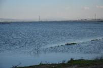 Baraj Kapakları Açıldı Amik Ovası Su Altında Kaldı