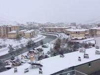 Bayburt'ta Kar Ve Tipi Hayatı Olumsuz Etkiledi