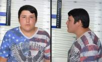 MEHMET AYDıN - 'Tosun' Interpol Listesinde