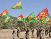 DIŞİŞLERİ BAKAN YARDIMCISI - Türkiye itirafı! PKK/YPG'ye yardıma koştular