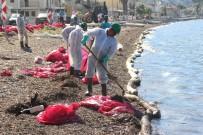 Deniz Kirliliğine Sebep Olan Firmaya Ceza