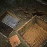 Kastamonu'da İlçeye Kadar İnen Ayı, 10 Arı Kovanını Parçaladı
