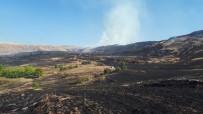 Kırıkkale'de Bin Dönümlük Arazide Anız Yangını