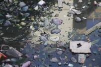 Zergan Deresine Atılan Çöpler, Hayvanların Hayatını Tehlikeye Atıyor