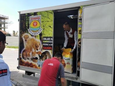 Tarsus'ta Sokak Hayvanları İçin 500 Kilo Mama Toplandı