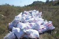 GEBZE BELEDİYESİ - Boş Araziye Moloz Döken Şahsa 5 Bin TL Para Cezası