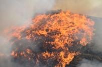 İstanbul'da Orman Yangınlarına İlişkin 3 PKK'lı Gözaltına Alındı