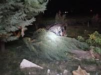 KAKLıK - Hafif Ticari Araç Çarptığı Ağacın Altında Kaldı Açıklaması 1 Ölü, 1 Yaralı