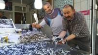 Mustafa Çelebi; 'Hamsinin Ömrü Tükeniyor'