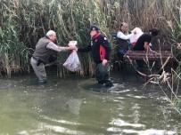Avlanması Yasak Olan 27 Yeşilbaşlı Ördek Kafeste Bulundu