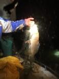 Kovada Gölü'nde Bin 400 Metre Ağ Ele Geçirildi