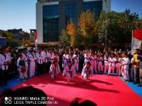 SİNAN ASLAN - Van'da Spor Branşlarının Tanıtımı