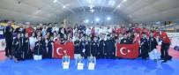 ALİ ŞAHİN - 2020 Yolunda Taekwondoda Kritik Viraj