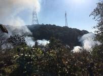 Beykoz Anadolu Kavağı'nda Ormanlık Alanda Yangın