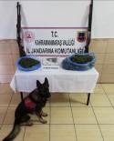 Elbistan'da Uyuşturucu Ticareti Yapan 2 Kişi Yakalandı