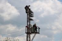 Dicle Elektrik Mardin'de Kış Hazırlığı Başlattı
