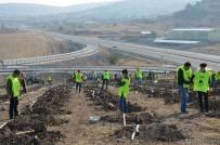 Petlas Çalışanları, 'Küçük Bir Fidan Kocaman Bir Nefes' Temalı Ağaç Dikme Kampanyası Düzenledi