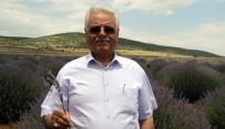 ITB Meclis Başkanı Doğan Açıklaması ''Gülbirlik, Yüksek Fiyat Verdi'