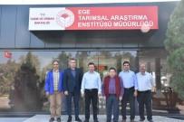 MEHMET ESEN - Kaymakam Şahin, Tarımsal Araştırma Enstitüsü'nü Ziyaret Etti
