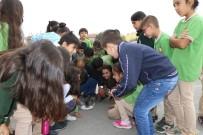 Öksüz Kalan 'Minnoş' Küçük Öğrencilerin Sevgisiyle Büyüyor