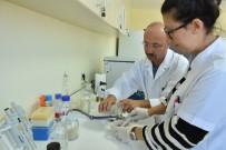 MAKÜ'lü Bilim İnsanları Hayvan Hastalıkları İçin Pomat Üretti