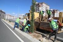 Niğde Belediyesi Yeşillendirme Çalışmaları Aralıksız Devam Ediyor