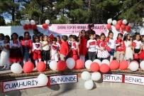 Erzincan'da 'Cumhuriyet Gününde Bütün Renkler El Ele' Etkinliği