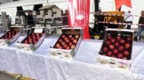 Niğde'de 'En İyi Elma' Yarışması Düzenlendi