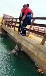 Sulama Kanalına Düşen Kurdu İtfaiye Kurtardı