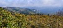 KAZDAĞLARI - (Özel) Kazdağları'nın Sonbahar Renkleri Büyülüyor
